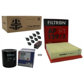 Kit Filtration Discovery 2 4.0 V8 (Premium)